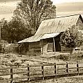 Old Barn Sepia Tint by Susan Leggett