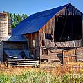 Old Barn With Concrete Grain Silo - Utah by Gary Whitton