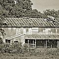 Old Black And White Barn by Sarah Broadmeadow-Thomas