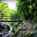 Old Bridge  In The Mountain by Radoslav Nedelchev