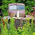 Old Car Grave Yard by Sherman Perry