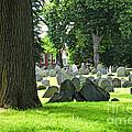Old Cemetery In Boston by Elena Elisseeva