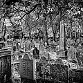 Old Cemetery In Philadelphia 2 by Val Black Russian Tourchin