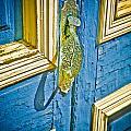 Old Door New Paint by Marilyn Hunt