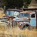 Old Farm Trucks by Steve McKinzie
