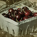 Old Fashioned Cherries by Jim And Emily Bush