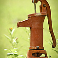 Old Fashioned Water Pump by Carolyn Marshall