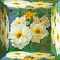 Old Fashioned Yellow Rose - Mirror Box by Mother Nature