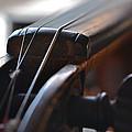 Old Fiddle 2 by Bill Owen