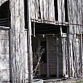 Old Frisco Barn by Amy Hosp