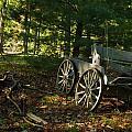 Old Frontier Wagon 1 by Douglas Barnett