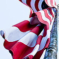 Old Glory by David Patterson