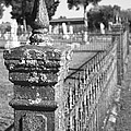 Old Graveyard Fence In Black And White by Kathy Clark