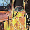 Old Green Truck Door by Phyllis Denton