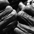 Old Hands 2 by Skip Nall