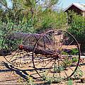 Old Hay Rake by Diane Wood