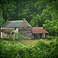 Old Home Place by Douglas Barnett