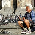 Old Man With Doves by Sasha  Grebenyuk