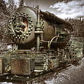 Old Mine Train Banff by Diane Dugas