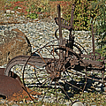 Old Plow by Ernie Echols