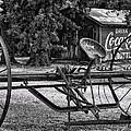 Old Plow by Susan Cliett