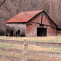 Old Red Barn by Betty LaRue
