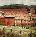 Old Red Barn by Joan Bertucci