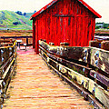 Old Red Shack by Wingsdomain Art and Photography