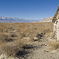 Old Rock Cabin At Dolomite by Rich Reid