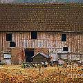 Old Rosedale Barn by Randy Harris