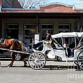 Old Sacramento California . Horse Drawn Buggy . 7d11482 by Wingsdomain Art and Photography