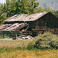 Old Saisia Barn In Spring by Mel White  Photo