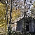 Old Shed In Fall by Richard Nickson