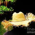 Old Straw Hat by Keri West