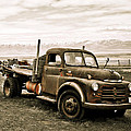 Old Timer 2 by Marilyn Hunt