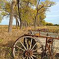 Old Wagon by Jill Battaglia
