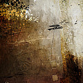 Old Walls Divide by James VerDoorn