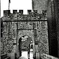 Old Walls by Madeline Ellis