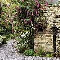 Old Water Pump, Ram House Garden, Co by The Irish Image Collection