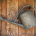 Old Watering Can by Dave Mills