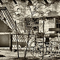 Old West by Diane Wood