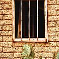 Old Western Jailhouse Window by James BO Insogna