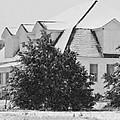 Old Wheelock School House