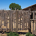 Old Wooden Fence Gate by Thom Gourley/Flatbread Images, LLC
