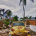 Old Yellow Truck Florida by Garry Gay