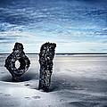 On A Coast by Svetlana Sewell