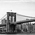 On The Brooklyn Side by Bill Cannon