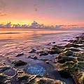 On The Rocks by Debra and Dave Vanderlaan