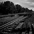 On The Tracks by Michael Cunsolo