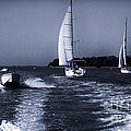 On The Water 1 - Venice by Madeline Ellis